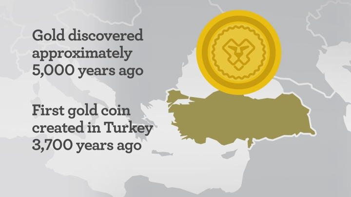 Focus On Gold Infographic